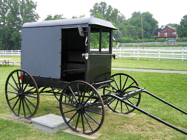 What makes the amish function as a group and how do they stay together?