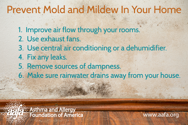 Mold Allergy 6 Tips To Prevent And Mildew In Your Home Asthma Foundation Of America
