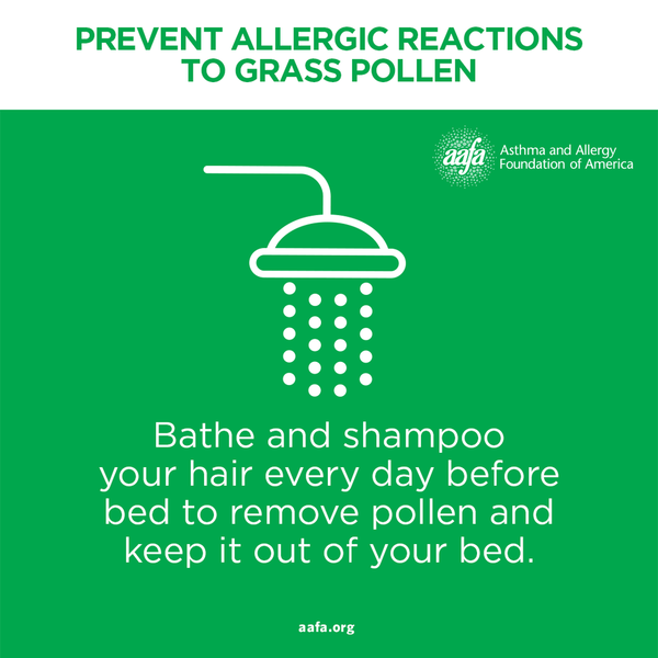 Bathe and shampoo every day to remove pollen