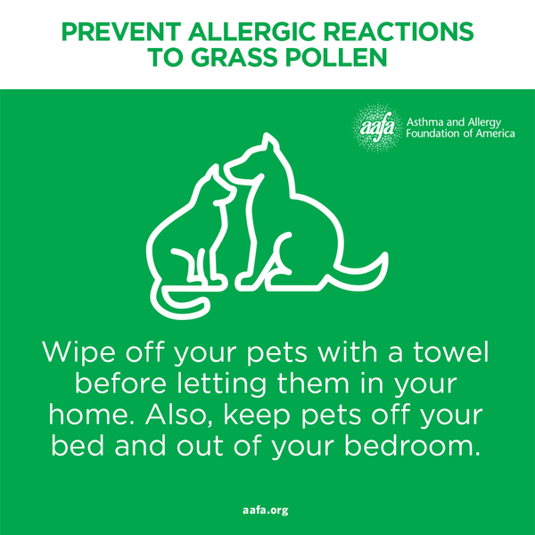 Wipe off pets when they come inside and keep them out of the bedroom