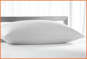 beautyrest-peachy-poly-pillow