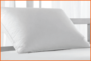 ralph-lauren-cotton-down-pillow