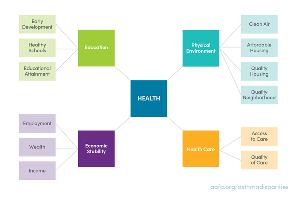 health-in-policies-graphic-ppt
