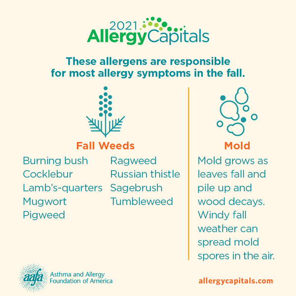 2021 Allergy Capitals - Weed and mold allergens responsible for fall allergy symptoms