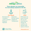 2021 Allergy Capitals - Weed and mold allergens responsible for fall allergy symptoms: 2021 Allergy Capitals - Weed and mold allergens responsible for fall allergy symptoms