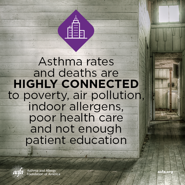 Asthma Awareness: Disparities
