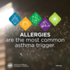 Asthma Education: Allergies are the Most Common Asthma Trigger