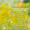 Eczema Education: Common Triggers